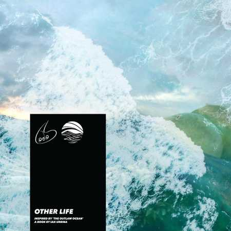Other Life by Lodos